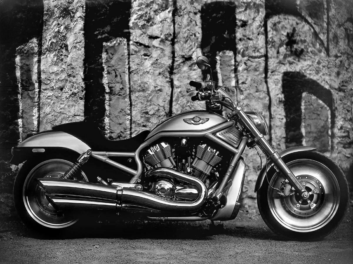 Ficha Técnica Da Harley Davidson V Rod Vrscdx Night Rod: Ficha Técnica Da Harley Davidson V-Rod VRSCA 2002 A 2006